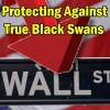 Investor Questions – Protecting Against True Black Swan Events