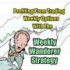 Using The Weekly Wanderer Strategy Trade For Covered Calls – Sep 23 2018