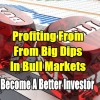 Profiting From Big Dips In Bull Markets – Become A Better Investor
