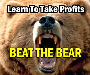 Beat The Bear – Learn To Take Profits With This Spreadsheet – Become A Better Investor