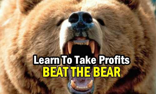 Become A Better Investor and Beat The Bear By Learning To Take Profits With This Spreadsheet