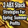 Barrick Gold Stock – Two Strategies For 2014 Spring and Summer Profits