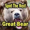 Market Direction and Spotting the Next Great Bear Market