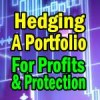 Hedging For Profits and Protection