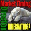 Market Timing / Market Direction Is The Bear Hibernating?