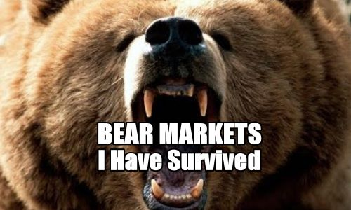 Bear Markets I Have Survived