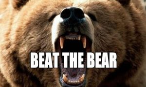 Strategies For Bear Markets and Corrections