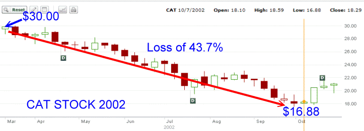 Cat Stock - 2002 Chart