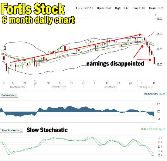 Fortis Stock earnings disappointment