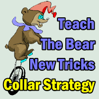 Teach The Bear New Tricks